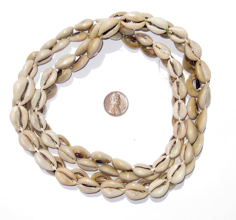 Kenyan Cowrie Shell Beads - The Bead Chest