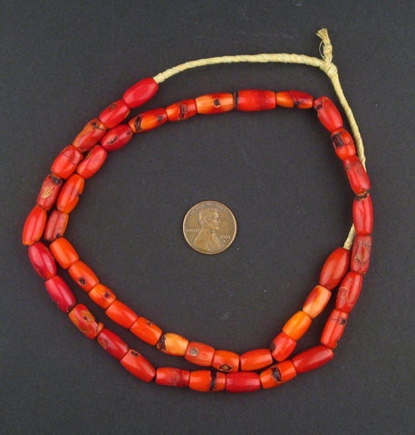 Polished Sea Coral Trade Beads - The Bead Chest