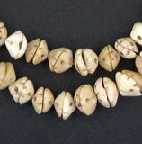 Antique Mauritanian Conus Shell Beads - The Bead Chest