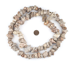 Burundi Brown Natural Seashell Beads