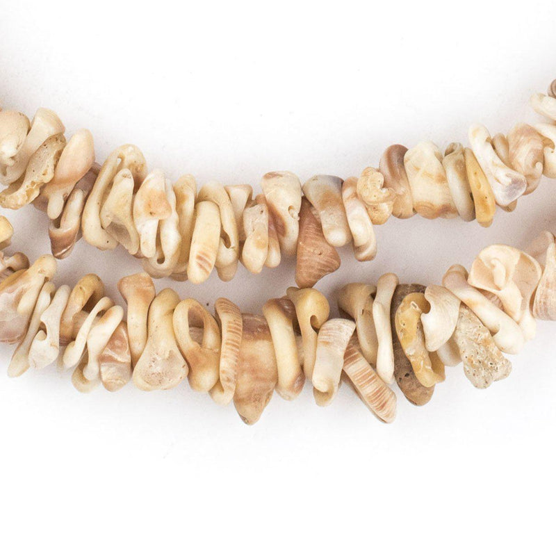 Natural African Shell Shard Beads - The Bead Chest