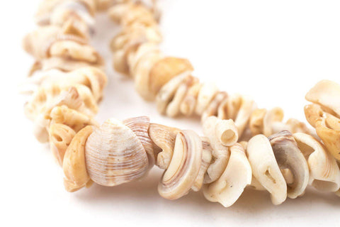 Image of Natural African Shell Shard Beads - The Bead Chest