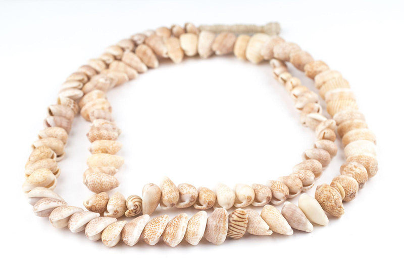 Spotted African Cowrie Shell Beads - The Bead Chest