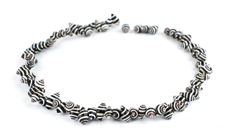 Natural Zebra Shell Beads - The Bead Chest