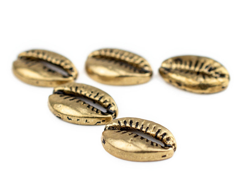 Brass Cowrie Shell Beads (Set of 5)