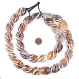 Pacific Brown Decorative Shell Beads (40 Inch Strand)