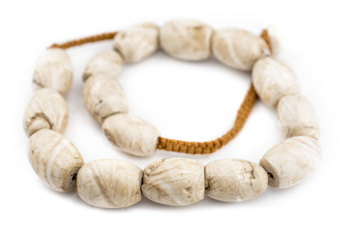 Image of Oval Naga Conch Shell Beads (24x16mm) - The Bead Chest