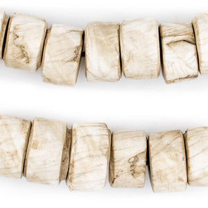 Cylindrical Naga Conch Shell Beads (16mm) - The Bead Chest