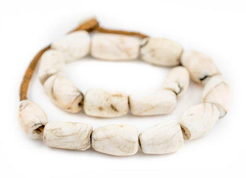 Barrel Naga Conch Shell Beads (14mm) - The Bead Chest