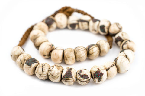 Image of Dark Inlaid Naga Conch Shell Beads (14mm) - The Bead Chest