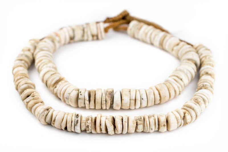 Disk Naga Conch Shell Beads (16mm) - The Bead Chest