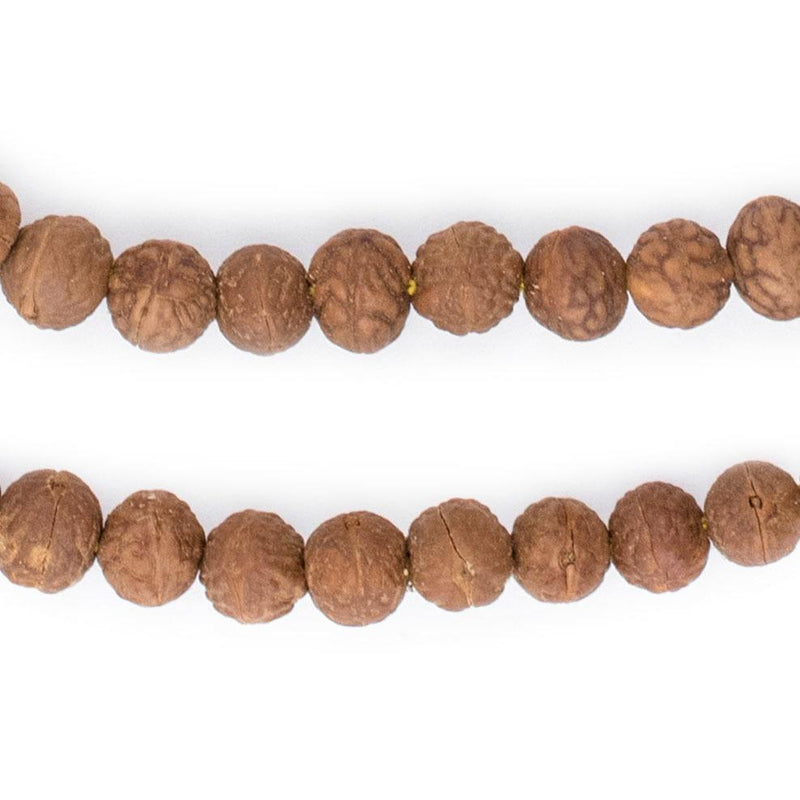 Bodhi Natural Seed Beads (8x9mm) - The Bead Chest