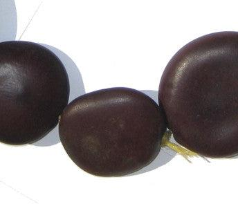 Natural Plant Sea Bean Beads - The Bead Chest
