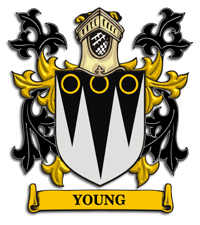 Young Family Crest Heraldic Jewelry