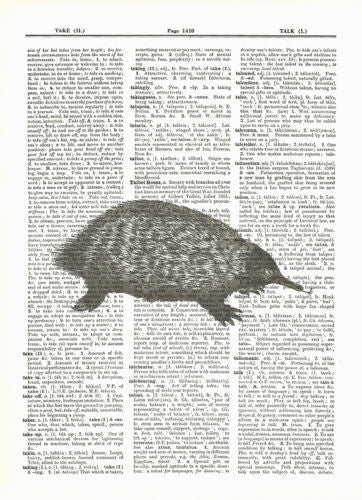 Anteater Wild Animal Mammal Dictionary Print Wildlife animal056