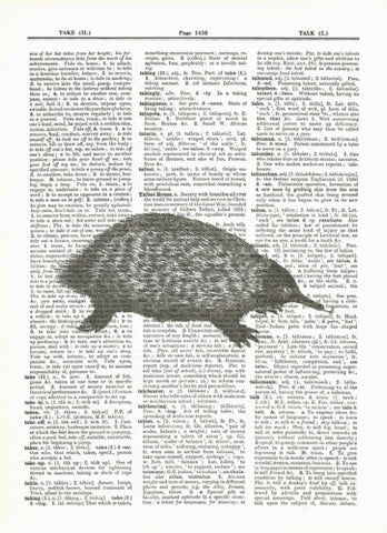 Anteater Wild Animal Mammal Dictionary Print Wildlife animal056 - Paperink Graphics