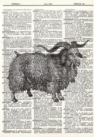 Angora Sheep Print Animal Art Dictionary Art Wall Decor animal017 - Paperink Graphics