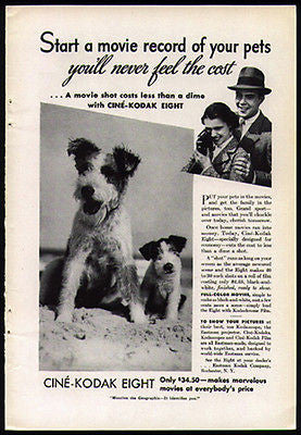 Wire Hair Terrier Dog Puppy 1938 Photo Ad Kodak Home Movie Cine-Kodak Eight