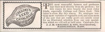 Gregorys Seed Growers AD Marblehead MA Squash 1895 Garden Vegetable Small AD - Paperink Graphics
