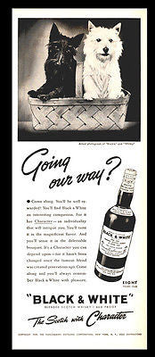 Scottie & Westie 1939 Ad Actual Dogs Photo Going Our Way Black & White Scotch