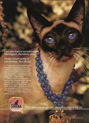 Siamese Cat Temple Dweller Cherished Adored 1988 Sheba Photo Ad
