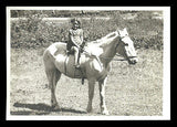 Delightful Girl Rides White Horse Photograph B/W Matte Finish 7x5 Period Dress - Paperink Graphics