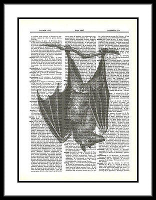 BAT Hanging Black Bat Creepy Dictionary Art Print bird008