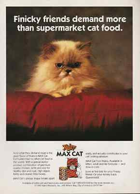 Peke Face Honey Persian Cat 1992 Finicky Max Cat Ad