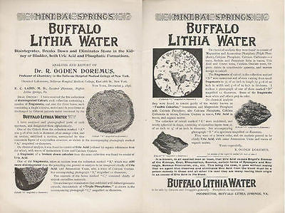Buffalo LITHIA WATER Eliminates Kidney Stones 2p 1897 Ad