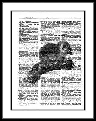 Opossum Dictionary Art Print Wildlife Wall Decor  animal038