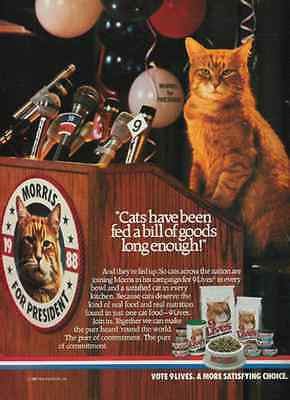 Morris Announces For President 1987 Cat Photo Ad