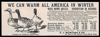 Ducks Down Quilt Bedding Blanket 1892 Print AD NY