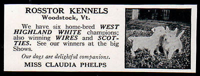 1927 Ad West Highland White Terrier Claudia Phelps Rosstor Kennels Woodstock VT - Paperink Graphics