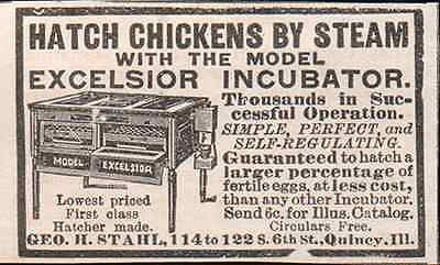 Hatch Chickens Incubator Excelsior Steam Incubator 1895 AD Geo H. Stahl Illinois