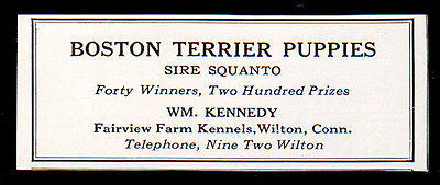 Boston Terrier Puppies Sire Squanto 1927 Dog AD Fairview Farm Kennels Wilton CT - Paperink Graphics