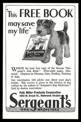 Wire Haired Terrier AD 1934 Puppy Health Sergeant's Dog Medicines Fox Terrier
