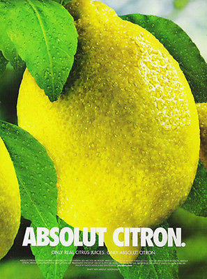Absolut Citron 2002 Vodka Photographic Art Ad Sweden - Paperink Graphics