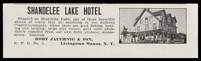 Livingston Manor 1915 Sullivan Co Shandelee Lake Hotel on Lake NY Photo AD - Paperink Graphics