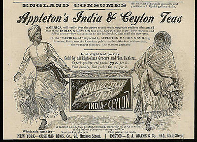 Appleton's India & Ceylon TEA Great Art 1895 Print AD