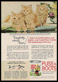 Cats Kittens Amber Eyes Puss 'n Boots 1959 Chandoha Photo Ad