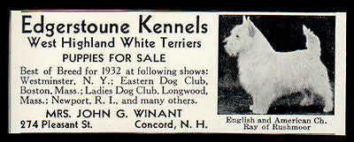 1933 AD West Highland White Terrier Ch Ray Edgerstoune Kennels Concord NH