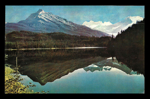 Mendenhall Glacier Postcard Alaska 1970 Reflected on Auk Lake  AK PC