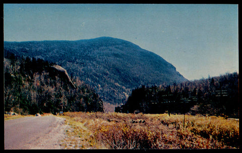 Elephant's Head Postcard New Hampshire Crawford Notch White Mts NH PC