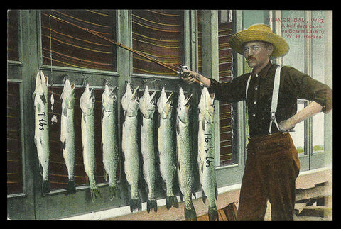 Fishing W H Becken Postcard Wisconsin Northern Fish Half Day Catch WI PC