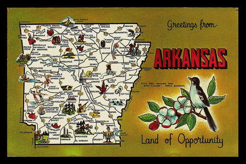 Arkansas State MAP Bird Flower AR Illustrated Postcard