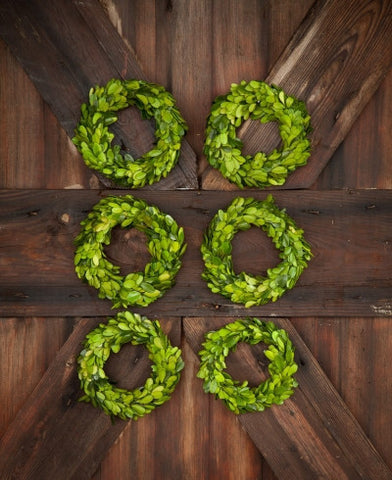 Small Boxwood Wreath (Single)