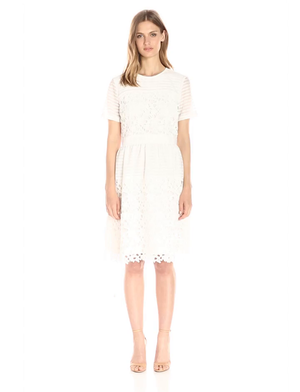 Lark & Ro Women's Short Sleeve Mixed Lace Dress