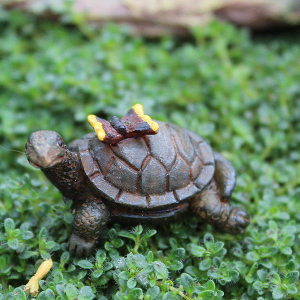 Tony the Turtle: Fairy Garden Miniature Animal - Baby Feathers Gift Shop