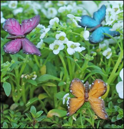 Butterflies in Flight set of 3 COLORS MAY VARY! Fairy Garden Animal Miniature Accessories - Baby Feathers Gift Shop