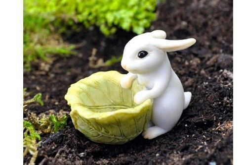 Bunny with mini Cabbage Planter: Fairy Garden Barnyard Miniature Animal - Baby Feathers Gift Shop